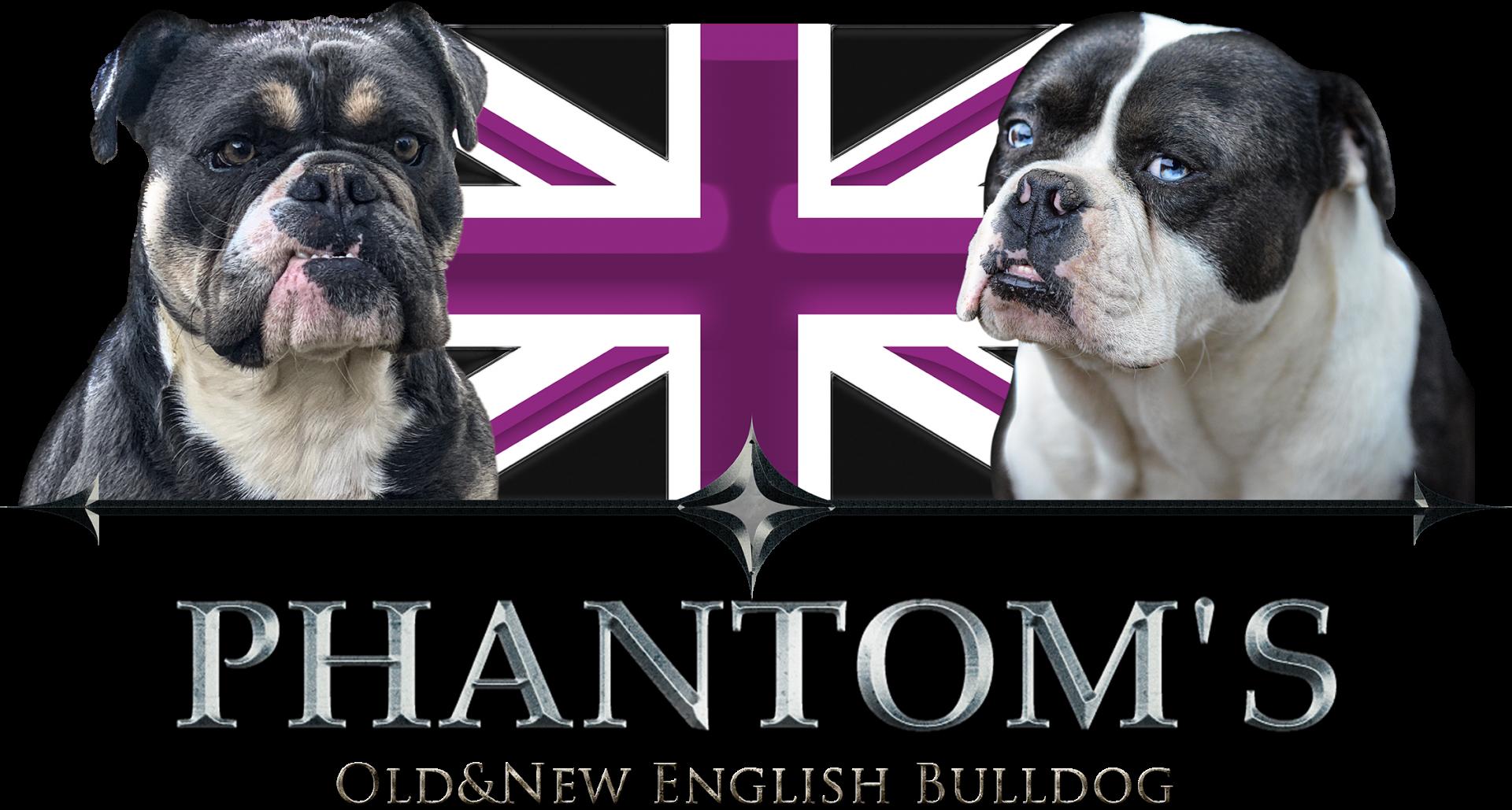 Phantom s logo